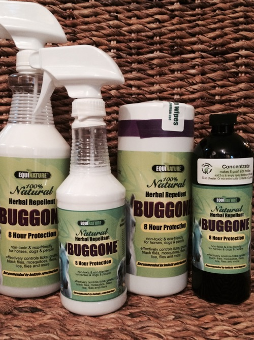 Buggone Natural Fly Spray