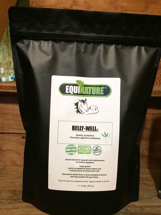belly well digestive support